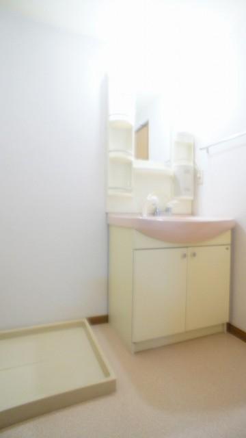 アラモードヴィラ 01030号室の洗面所
