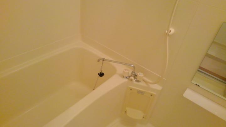 エトワ-ルイズミ 01010号室の風呂