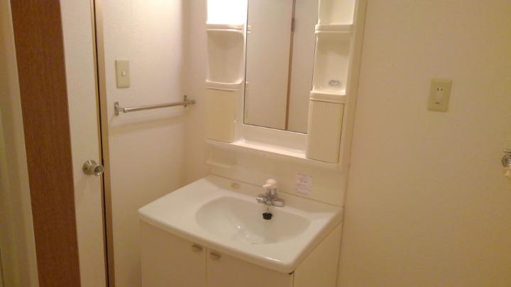 エトワ-ルイズミ 01010号室の洗面所