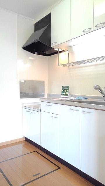 グラースカルム 01020号室のキッチン