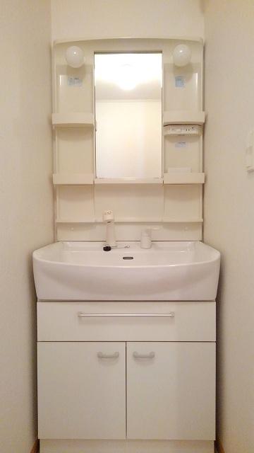 グラースカルム 01020号室の洗面所