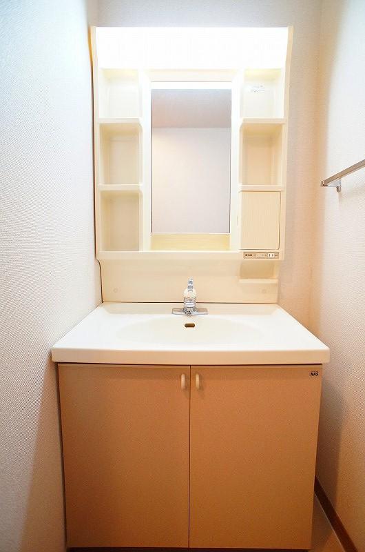 シャン・ロジュマン 02020号室の洗面所