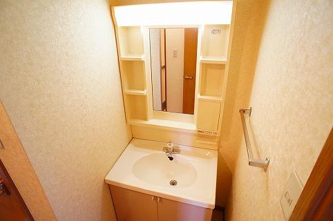 シャン・ロジュマン 02040号室の洗面所