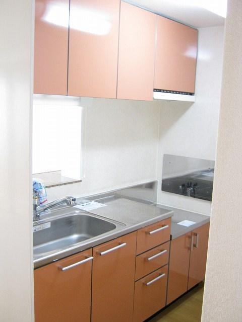 ドリ-ム KⅡ 01010号室のキッチン