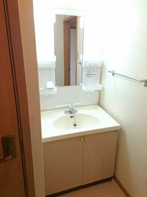 ノヴェルハイツ C 01020号室の洗面所