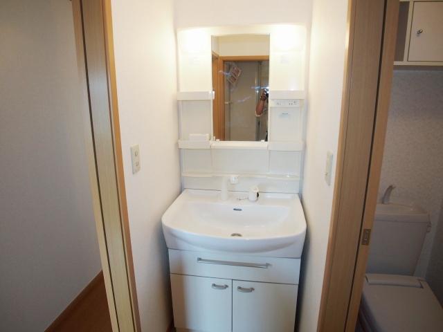 ル-ラル シティTI B 02020号室の洗面所
