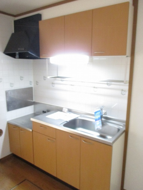 パストラルコ-トⅡ番館 01010号室のキッチン