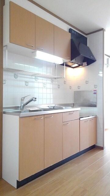 パストラルコ-トⅡ番館 02020号室のキッチン
