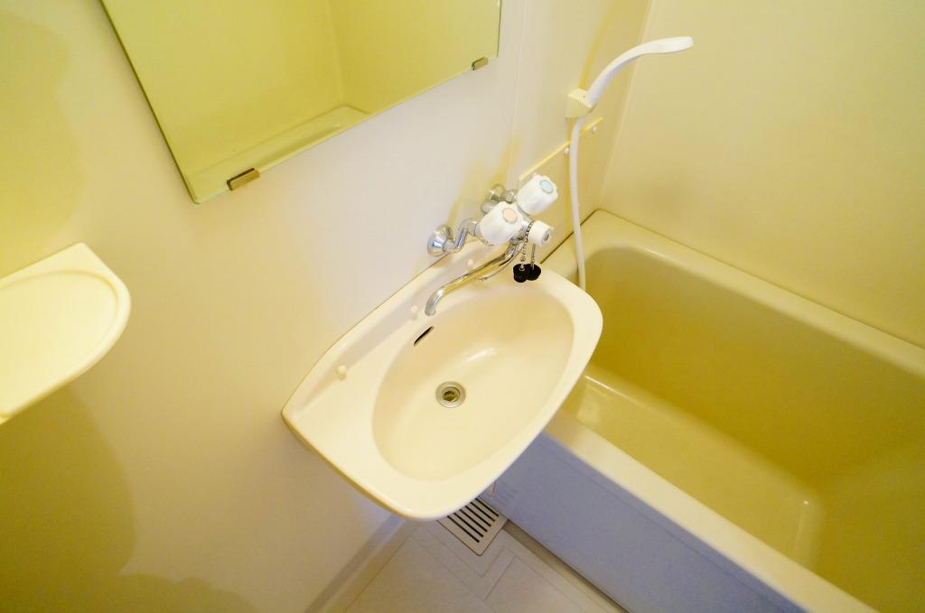 エルディム・菊地 02010号室の洗面所