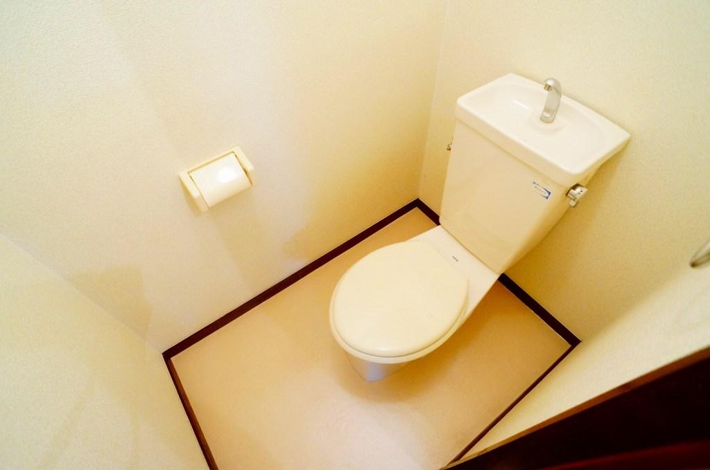 エルディム・菊地 02010号室のトイレ