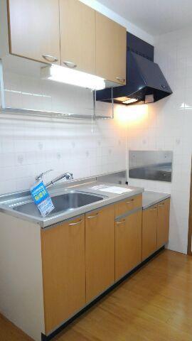 プリムローズガーデン 02020号室のキッチン