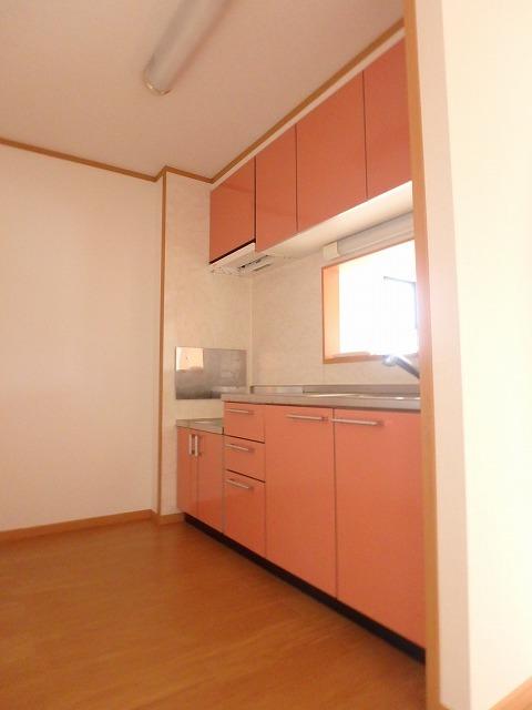 ロイヤル・シャトー 02030号室のキッチン