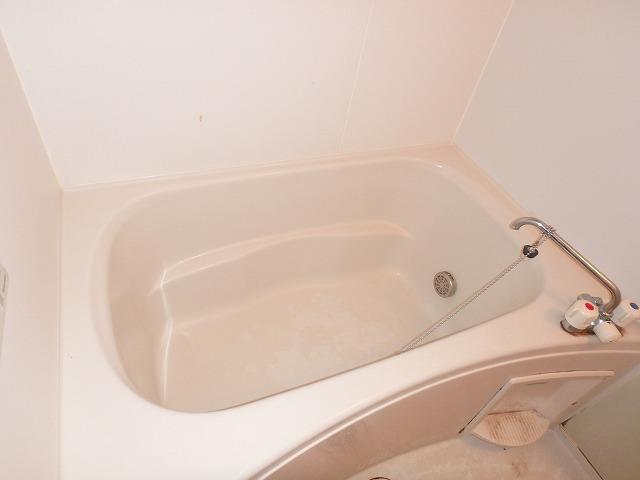 ロイヤル・シャトー 02030号室の風呂