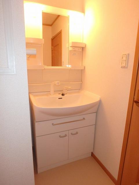 ロイヤル・シャトー 02030号室の洗面所