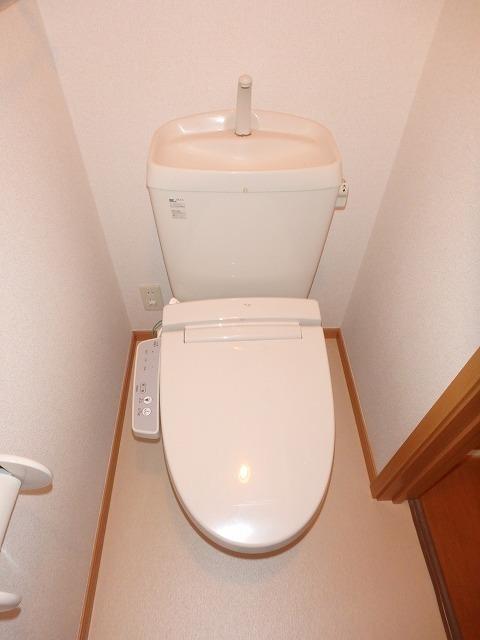 ロイヤル・シャトー 02030号室のトイレ