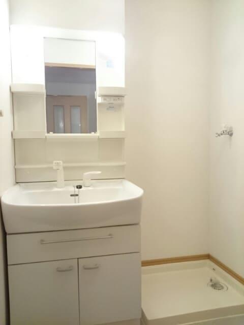 ル-ラルハ-モニ-TI A 01010号室の洗面所