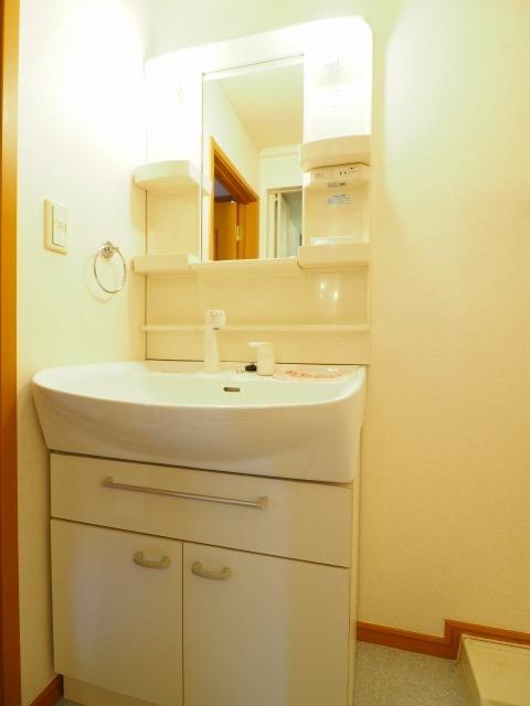 メゾンラフィネ 02030号室の洗面所