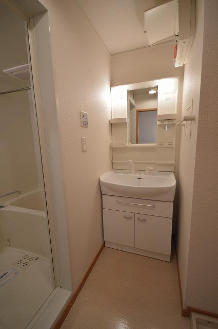 ルームハウスSUN 02010号室の洗面所