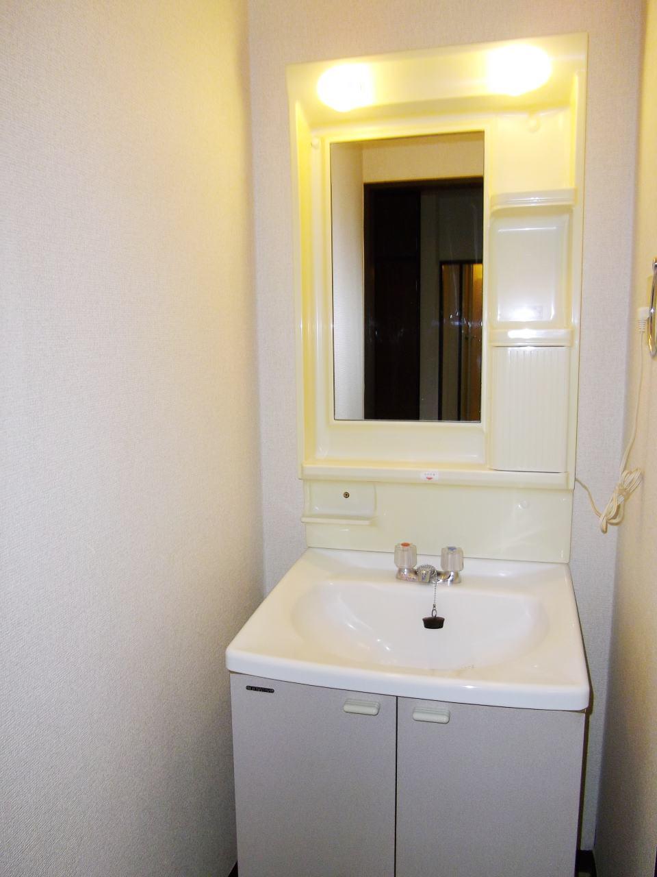 クローバーハイツ 02010号室の洗面所