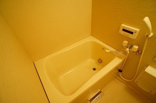 ペーシュ・ド・フルール 02020号室の風呂