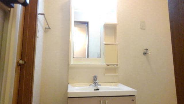 アラモードヴィラ弐番館 01030号室の洗面所