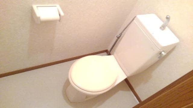 アラモードヴィラ弐番館 01030号室のトイレ