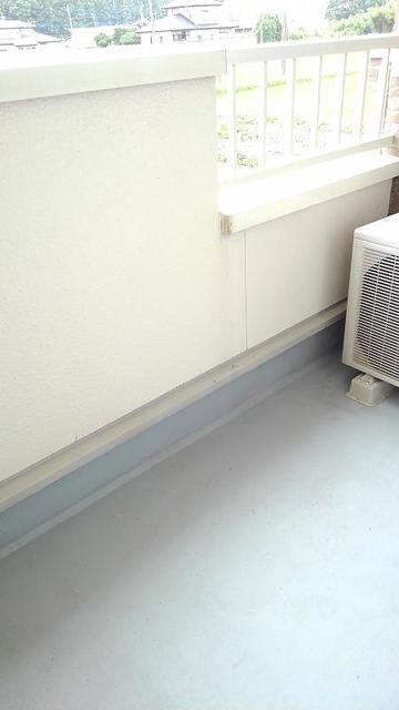 サニーメゾン撫子501B 02010号室のバルコニー