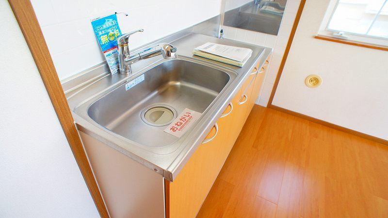 キャッスルハイツ 02020号室のキッチン