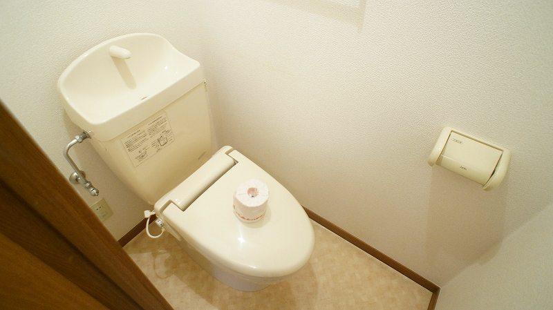 キャッスルハイツ 02020号室のトイレ