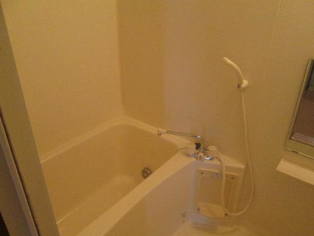 メゾンリュミエ-ルB 01010号室の風呂