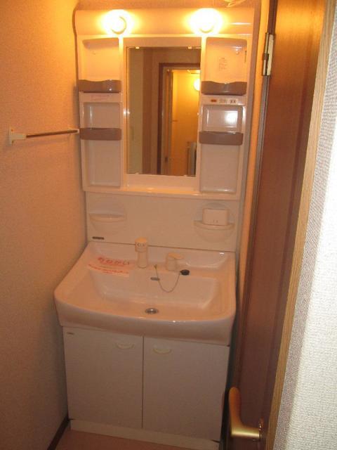 メゾンリュミエ-ルB 01010号室の洗面所