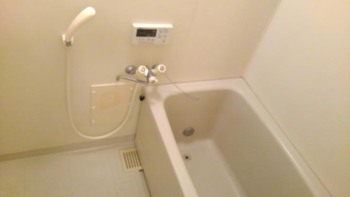 ビューテラスⅡ 02040号室の風呂