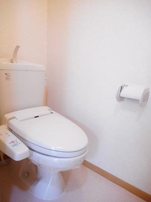 Belle Maison 桜 02010号室のトイレ