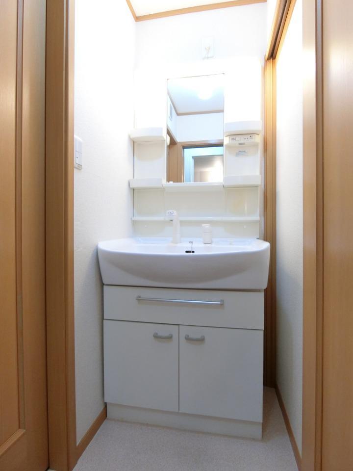 ウロジンゼⅡ 02010号室の洗面所