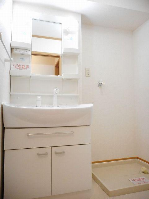 サンフラワーB 01010号室の洗面所