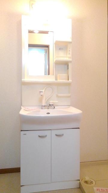 ウエスト 21 02010号室の洗面所