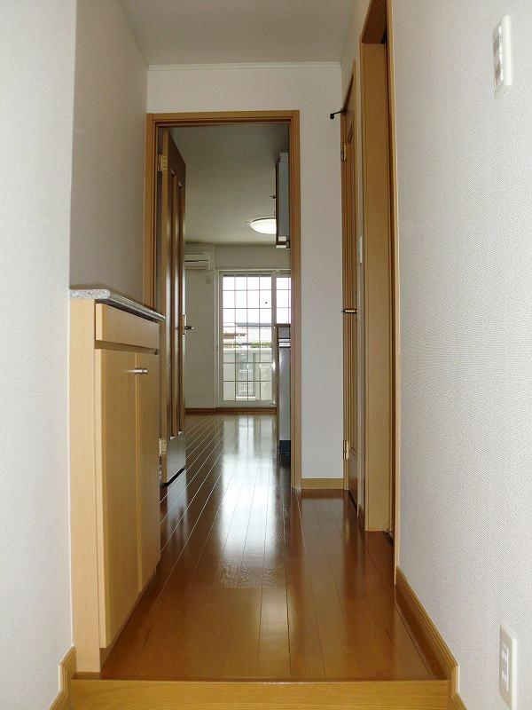 メゾン・アローン 01030号室の玄関