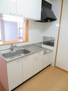 メリディオ城西B 02010号室のキッチン