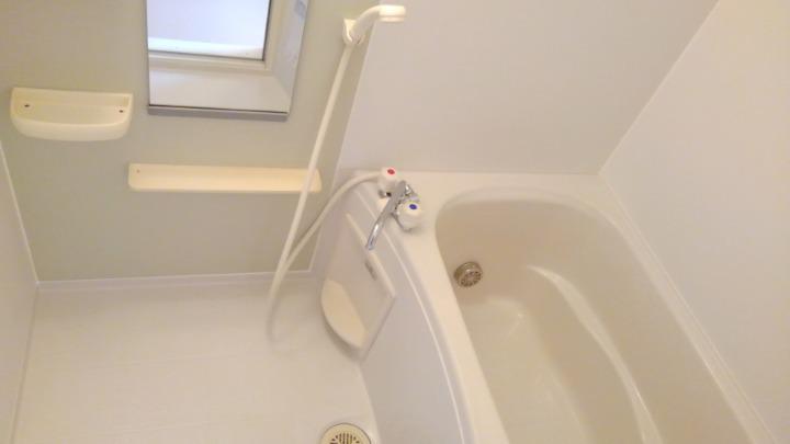 メゾン・ラフォーレC 01020号室の風呂