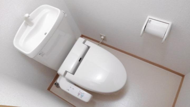 メゾン・ラフォーレC 01020号室のトイレ