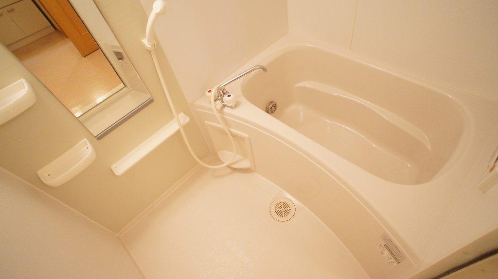 ラ・フルール A 01030号室の風呂