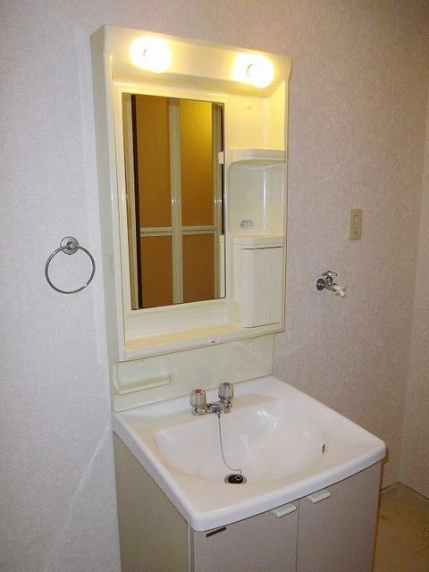 レインボーパレス 02020号室の洗面所