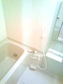 ヴィラ・グリシ-ヌ 01040号室の風呂