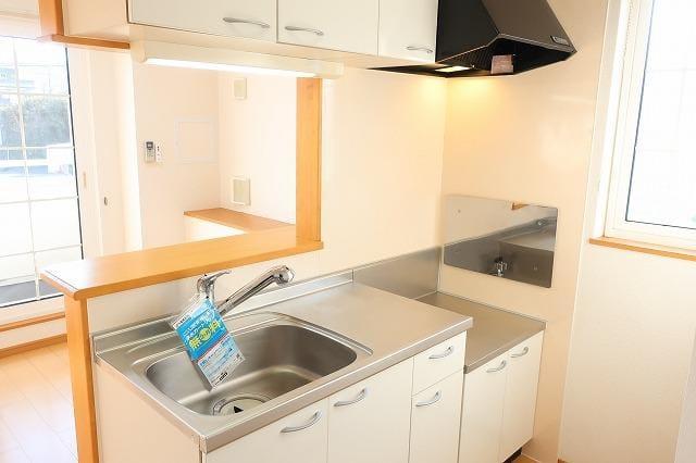 メゾン・ド・ソレイユ 02010号室のキッチン