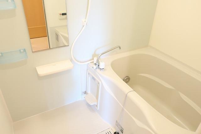 メゾン・ド・ソレイユ 02010号室の風呂