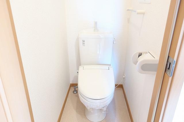 メゾン・ド・ソレイユ 02010号室のトイレ