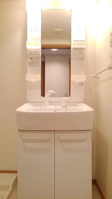 カルム・セーズ 02010号室の洗面所