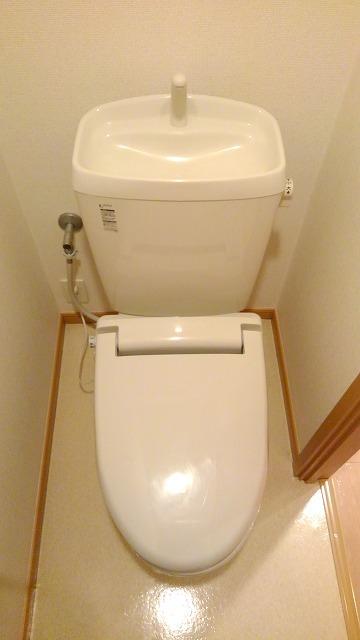 カルム・セーズ 02010号室のトイレ