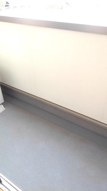 カルム・セーズ 02010号室のバルコニー