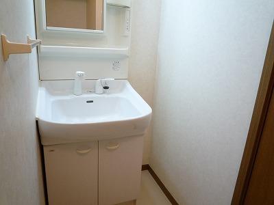 グランチェルト 02020号室の洗面所